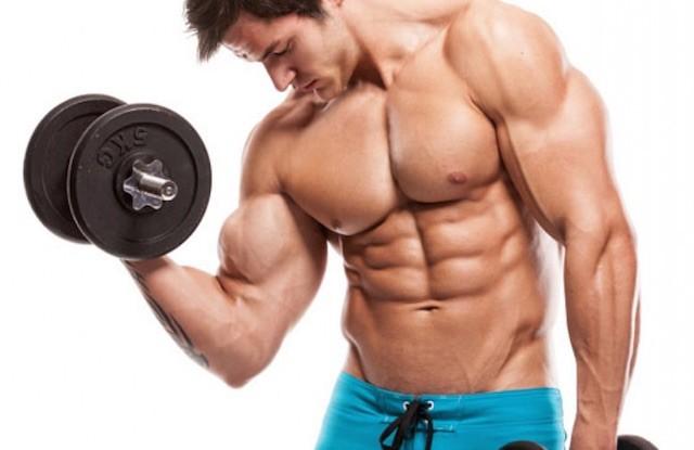 La massa muscolare ed il suo allenamento