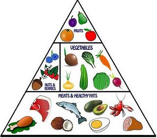 overpress.paleo-dieta-diet-exerceo-alimentaizione-metabolica-salute-benessere