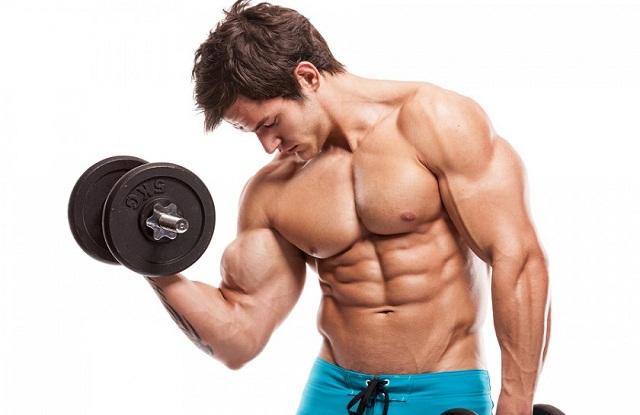 fat-grassi-lipidi-alimentazione-exerceo-overpress-fitness-salute-benessere