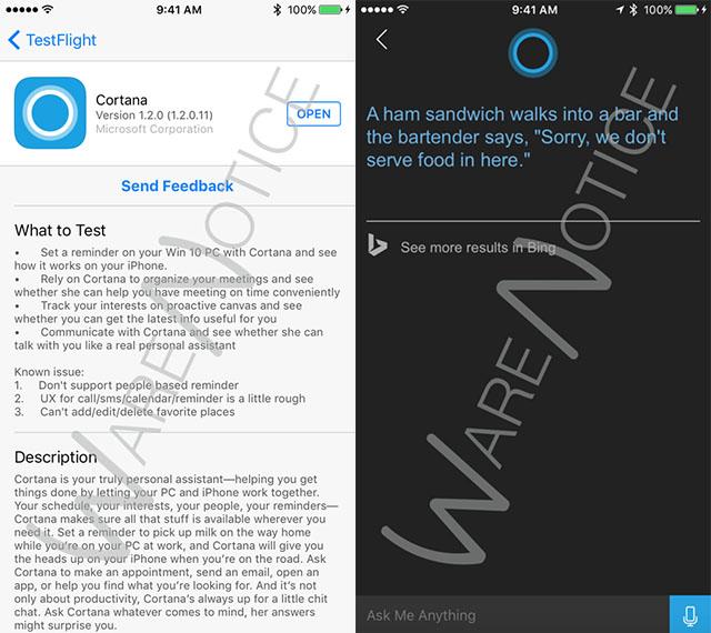 Cortana iOS